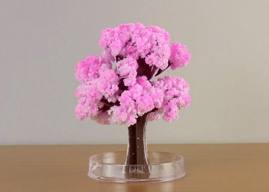 3D Paper Tree | Kids' Crafts | Fun Craft Ideas | FirstPalette.com | 643x900