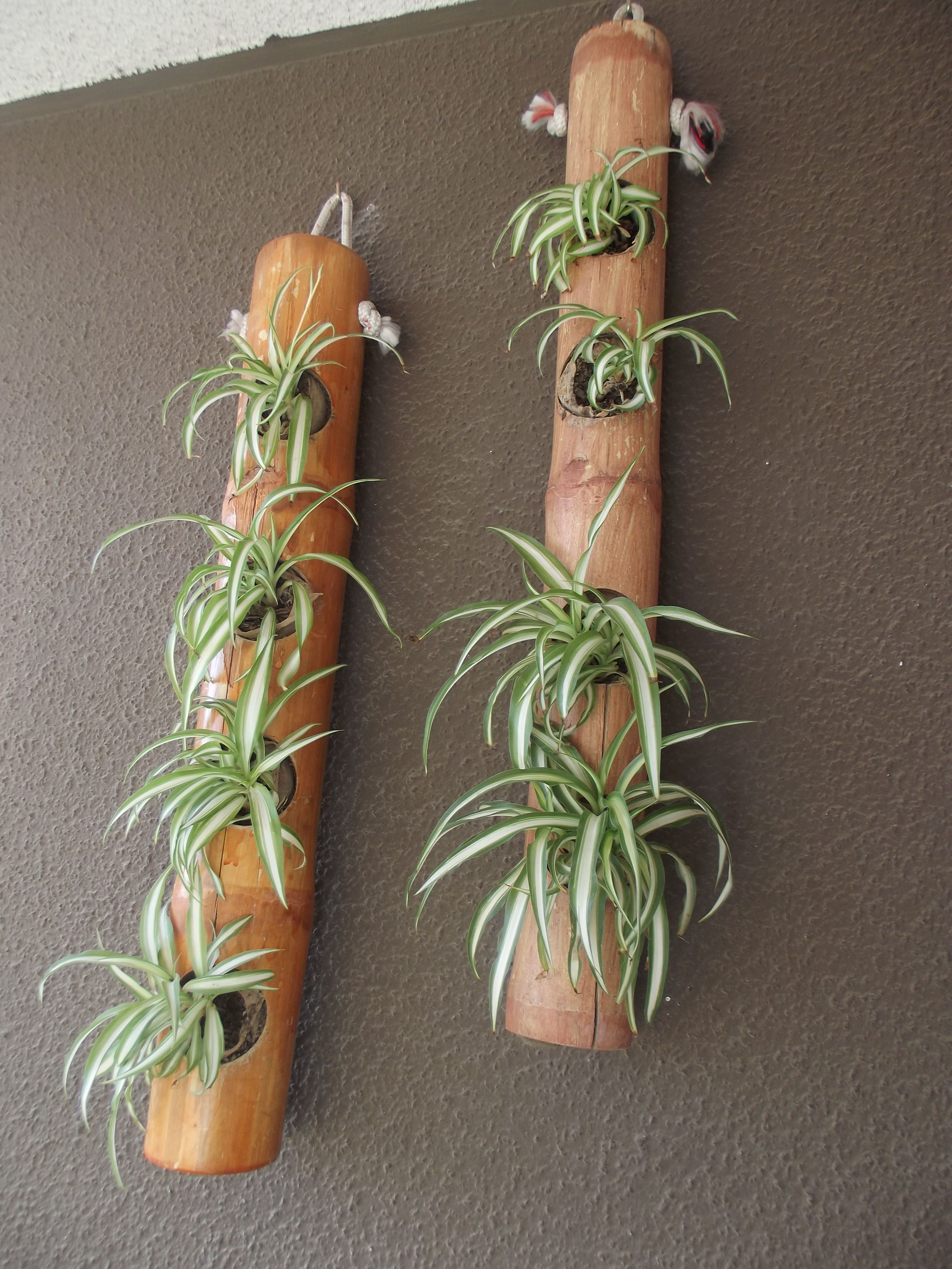 Some Easy DIY Bamboo Projects